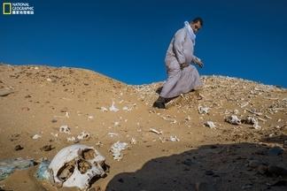影像藝廊:歷史掠奪戰