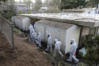 COVID-19風暴來襲,為什麼有些人染病的風險較大?