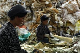 響應國家地理雜誌「不方便生活節」,Giloo紀實影音精選6部環保紀錄片,一起選擇更好的地球!