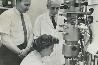她在半世紀前發現了冠狀病毒──卻沒有獲得多少肯定