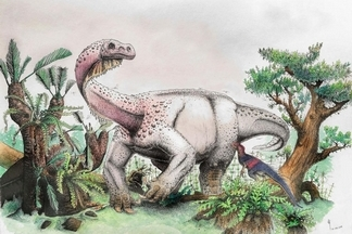 12噸重的奇妙恐龍竟像喵星人一樣蹲伏?