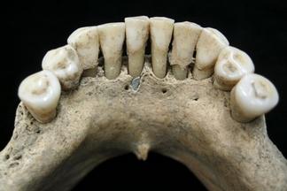中世紀女性藝術家因「藍牙」而曝光