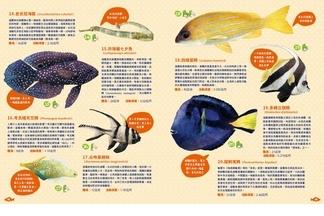 《世界上有哪些魚? 》 印度─ 太平洋海域2