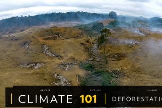101氣候教室:森林砍伐