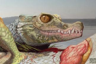 德州市郊發現古怪的鱷魚親戚化石