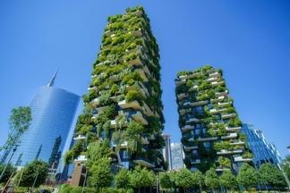 為城市扦插一座森林 (Sponsored)