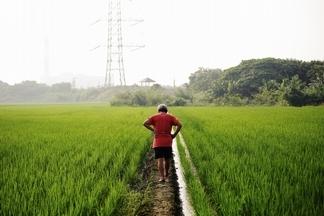 友善有機,耕耘健康食農(特別企畫)