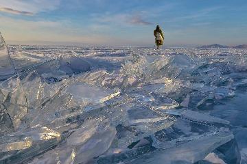 啟發欣賞世界的觀點:2019國家地理全球攝影大賽結果出爐!