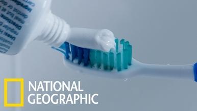 塑膠的故事:牙刷