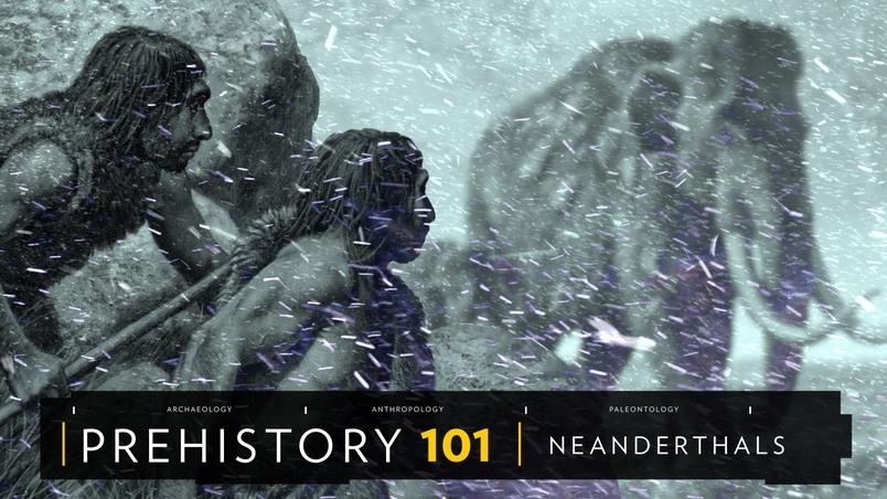 101史前教室:尼安德塔人