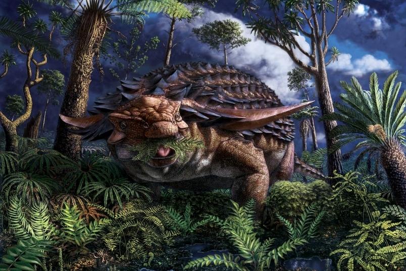 這隻披甲恐龍的「最後一餐」吃了甚麼?