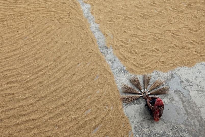 孟加拉:碾米廠