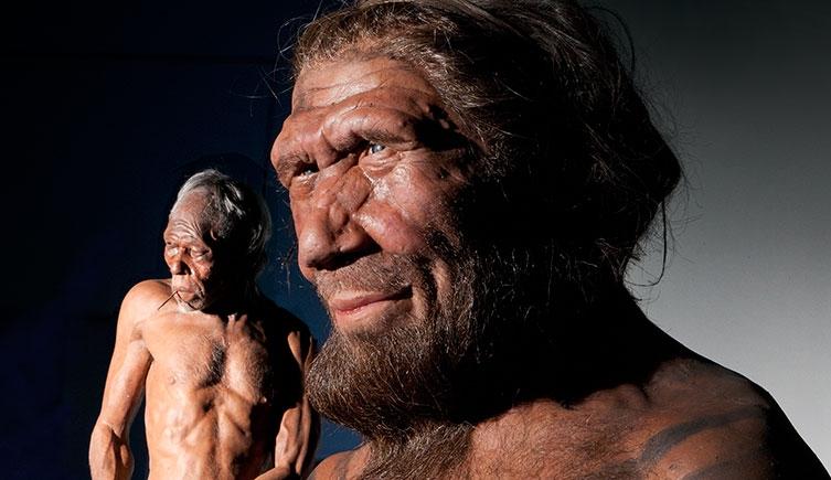 從DNA看尼安德塔人與智人的複雜情史