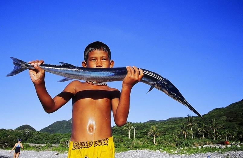 魚被抓光光了?面對空蕩蕩的海,我們該怎麼辦?