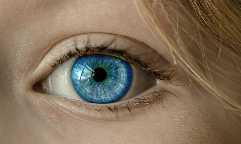 人長大了,識別人臉的大腦區域也在變大