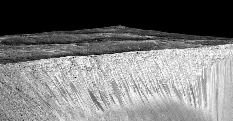 什麼樣的生物能生活在火星?