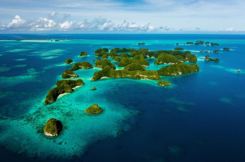 親臨貼近帛琉的海底魅力(Sponsored)