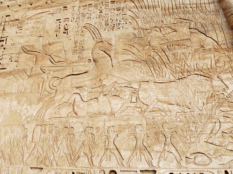 那些年,古埃及曾是動物天堂