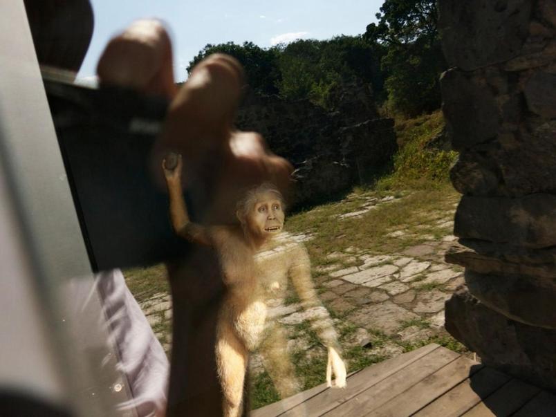 投擲石塊讓我們更像人類?