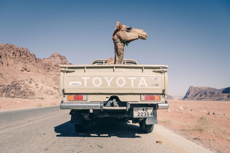 Photograph by Matt Pycroft, National Geographic Your Shot