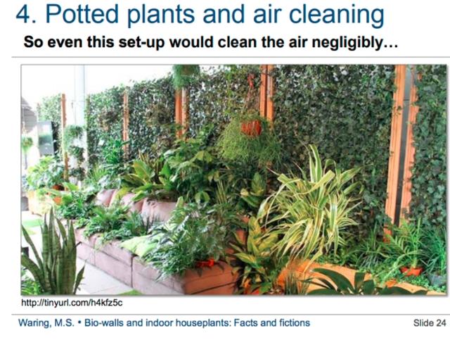 盆栽和空氣淨化:即使植物多到這樣,淨化力也是忽略不計的。圖片來源:Michael Waring