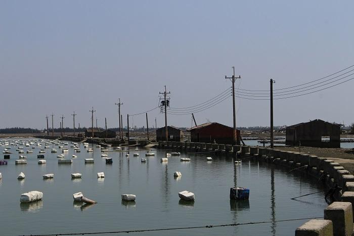 在嘉義東石的白水湖漁村,當地人利用保麗龍塊當作蚵棚來養殖牡蠣。攝影:黃靖軒