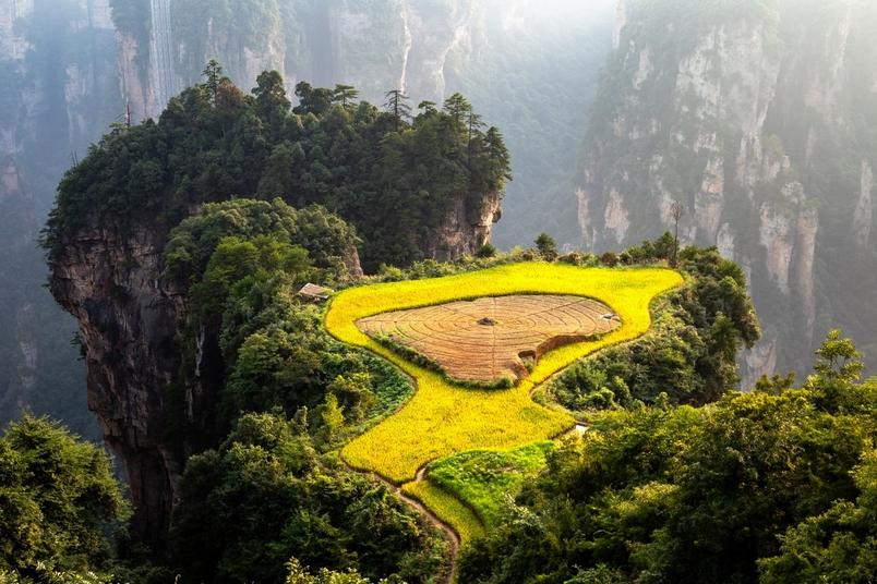 凡在世界任何國家和地區發現類似張家界石英砂岩峰林的地貌,都可統稱「張家界地貌」