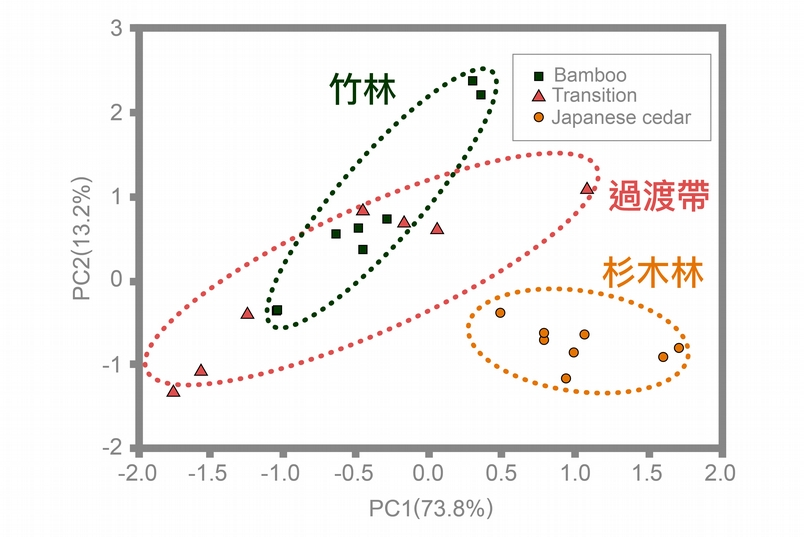 "磷脂脂肪酸分析 (PLFA):孟宗竹林與過渡帶的微生物族群結構較為相似,但與杉木林截然不同。資料來源│Chang, E.H. and Chiu C.Y.* , 2015, ""Changes in soil microbial community structure and activity in a cedar plantation invaded by moso bamboo "", Applied Soil Ecology, 91, 1-7. 圖說重製│廖英凱、張語辰"