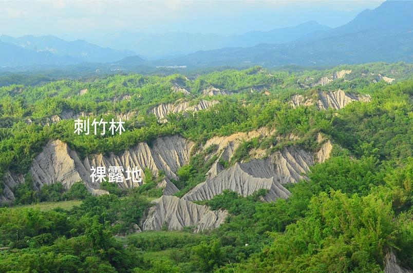 臺南左鎮的月世界。北向坡長滿綠意盎然的刺竹林,向陽乾燥的南向坡則維持裸露地。圖片來源│邱志郁