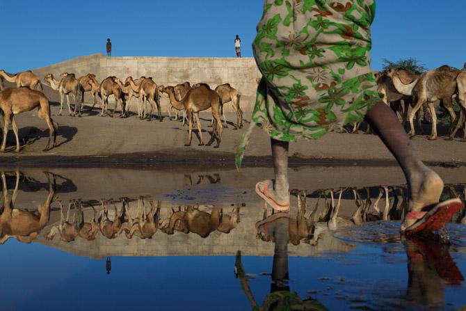 08-watering-camels-at-awash-river-670f