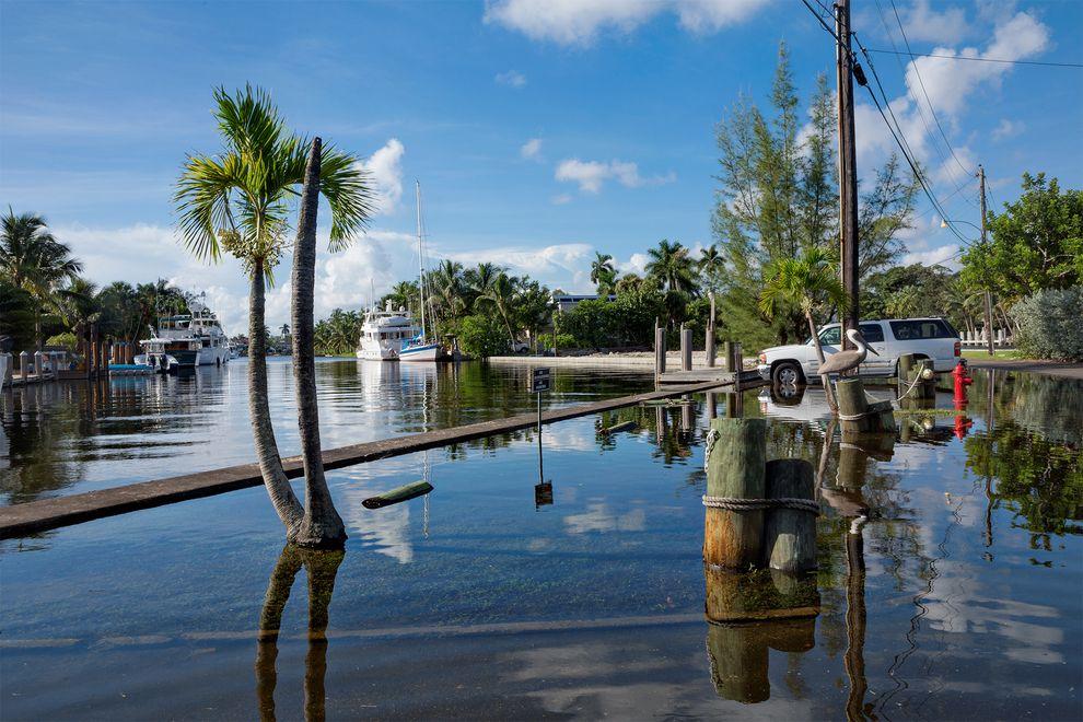 一個新報告說明現在海洋上升的速度比過去20年快。 2014年10月的王潮比佛羅里達州羅德岱堡典型的高潮高出0.3公尺,讓我們預見了這種新常態。 Photograph by George Steinmetz, National Geographic Creative