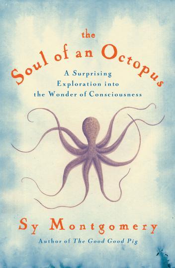 《章魚的靈魂》封面照 Courtesy Atria Books/ Simon & Schuster