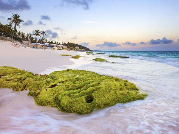 bow-bermuda-pink-beach_92362_600x450