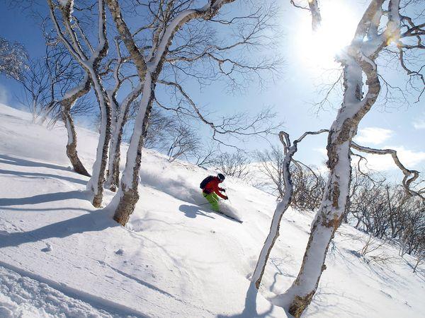 bow-japan-hokkaido-skiing_92371_600x450