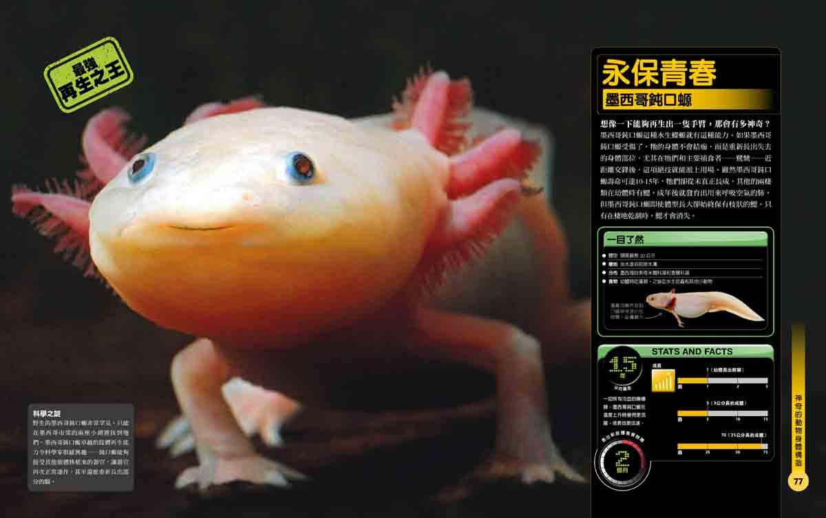 點擊圖片可放大,圖片出自《超能力動物百科》