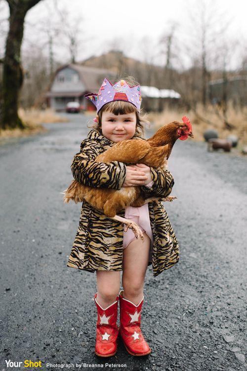 女孩抱著大公雞拍生日照片