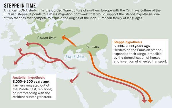 解釋印歐語系起源的安那托利亞假說與草原假說。(圖表來源)