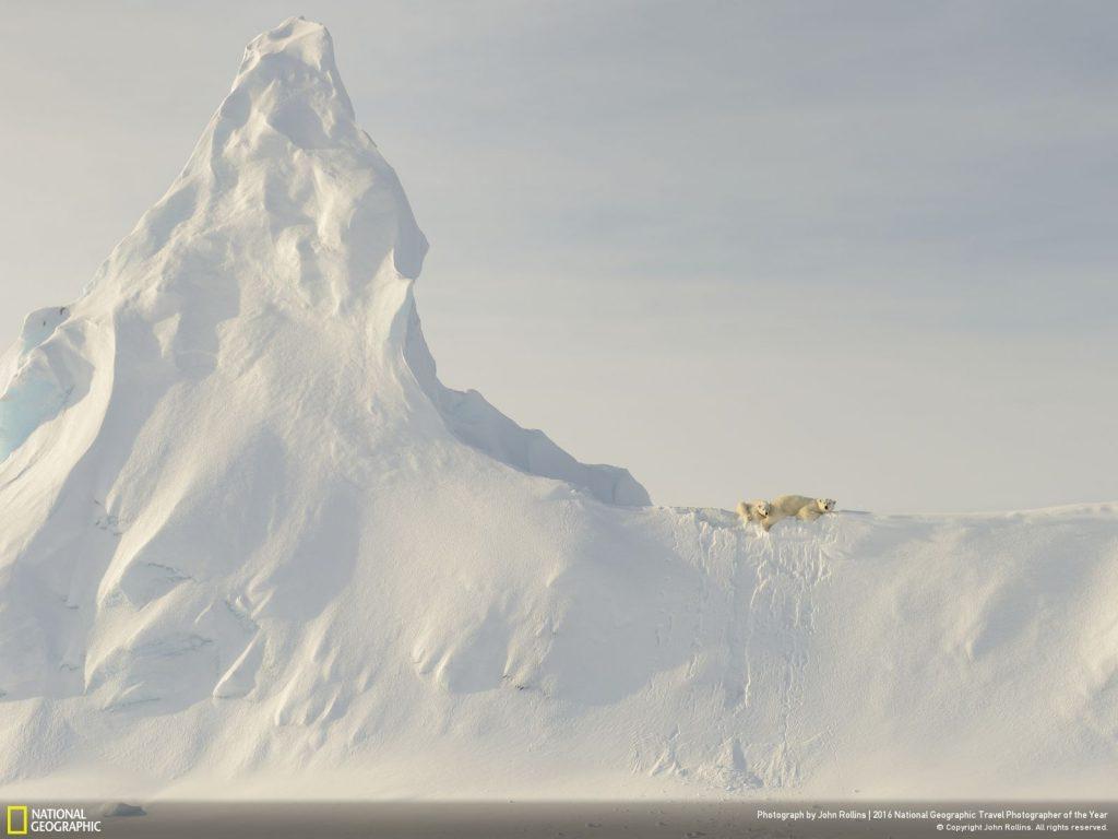 這張是遠在巴芬島沿岸戴維斯海峽海冰上拍攝的照片。北極熊媽媽與寶寶掛在冰山上。對我而言,北極熊與冰山相較之下顯得渺小,不禁讓人想到北極熊的生態危機。 http://yourshot.nationalgeographic.com/photos/8068099/ Photograph by John Rollins