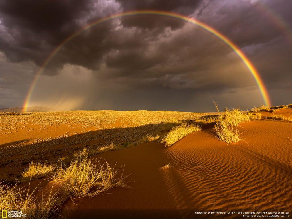 攝於納米比亞自然保護區。Photograph by Stefan Forster