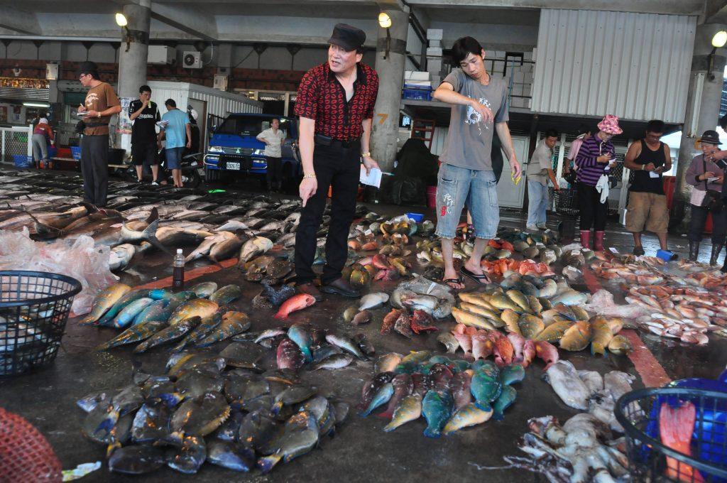 五彩繽紛的珊瑚礁魚類,恐怕禁不起人類的消耗。