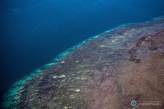 2016年大堡礁珊瑚白化調查空拍照,珊瑚礁的邊緣和其中的白色斑塊,都是白化的珊瑚。圖片出處:ARC Centre of Excellence for Coral Reef Studies。