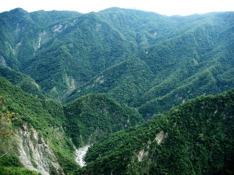 台灣山區的地形複雜、交通不便,野外研究稀有且活動廣泛的大型動物的困難度不在話下。