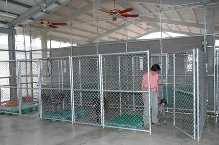 對偵測犬的長期照養及日常維護是工作犬計畫的最基礎作業,平日需提供安全且健康的硬體環境。