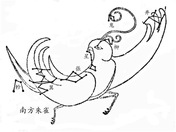 井、鬼、柳、星、張、翼、軫(南方朱雀),圖取自高魯的《星象統箋》。