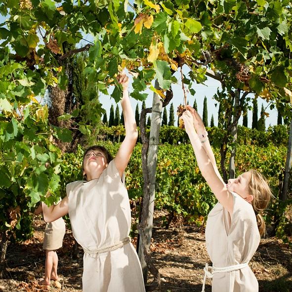 葡萄酒在古羅馬城是首選的飲料,並從這裡傳播到帝國各地,包括法國在內。在靠近法國南部亞耳鎮的馬斯德土列爾莊園,製酒人埃維.杜洪和考古學家一起依照公元1世紀的配方重現羅馬時期的葡萄酒,並重演古代的製酒程序。葡萄由扮成羅馬奴隸的當地人採摘,被一名羅馬士兵當成點心吃,並用巨大的橡樹幹壓榨,流出的汁液會在未封口的陶罐中發酵。羅馬人用來為酒加味的原料出人意表:杜洪製作的一種酒含有葫蘆巴、鳶尾以及海水。Photograph by Brian Finke