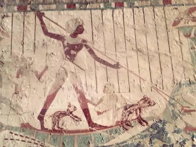 埃及 (1)