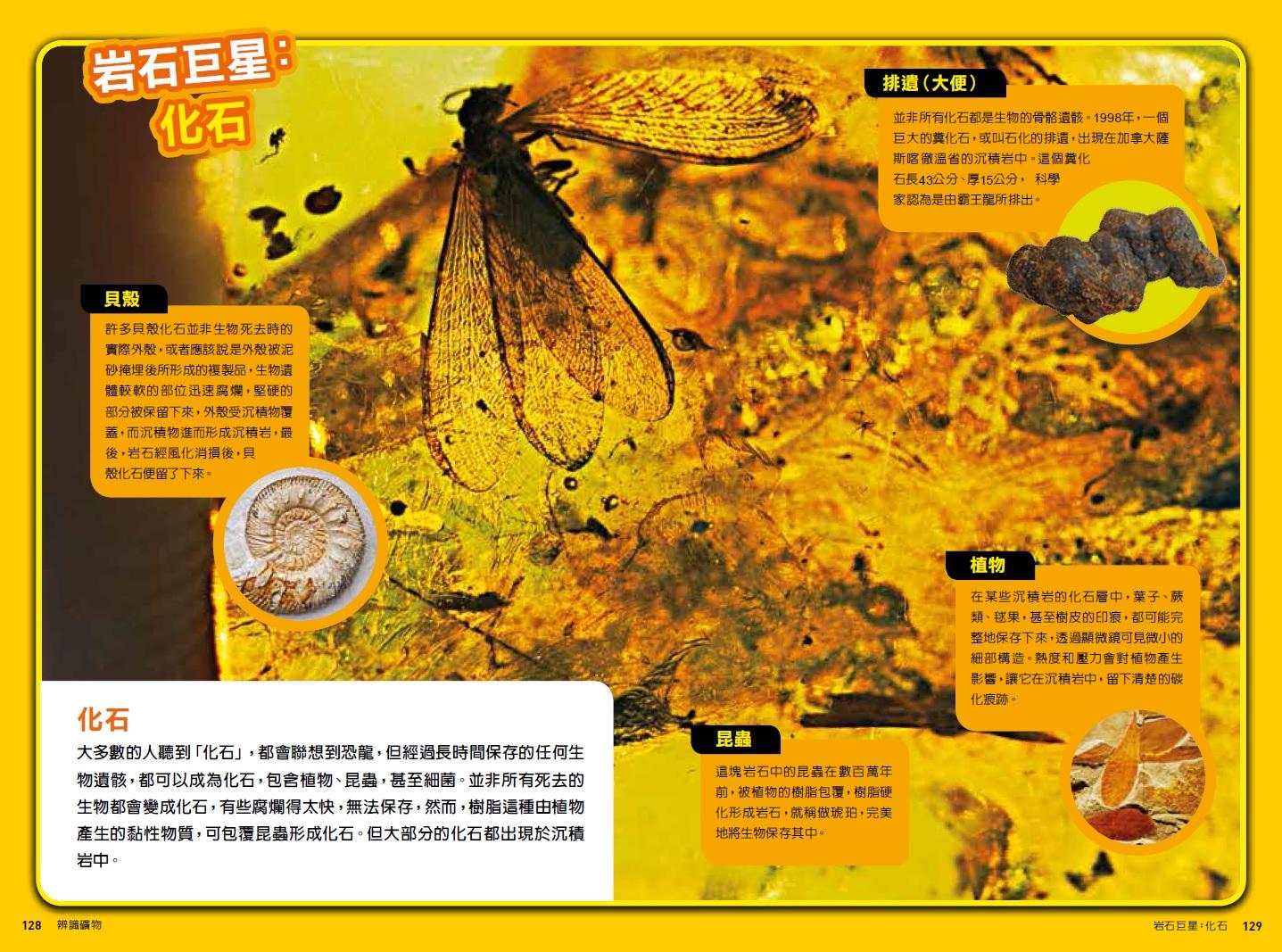 圖片出自《國家地理探險王野外觀察指南:辨識礦物》