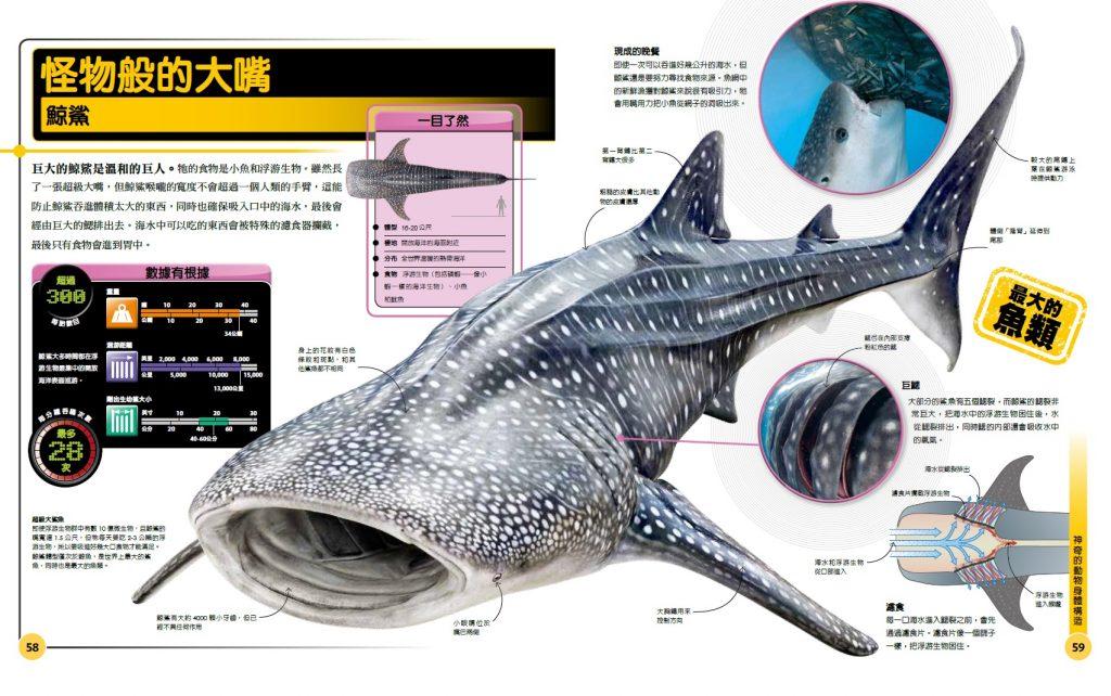 圖片出自《超能力鯊魚百科》