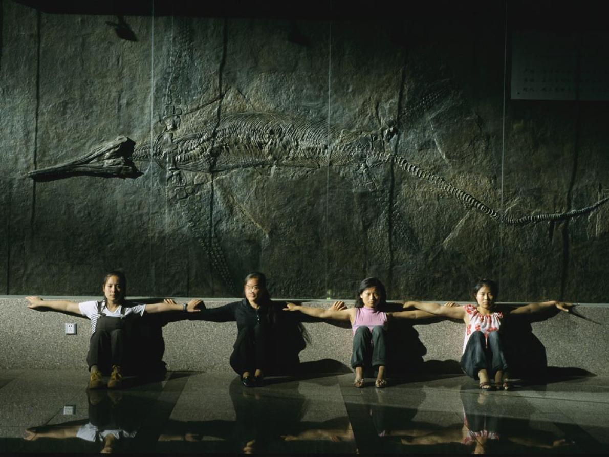 5.7公尺長的魚龍化石