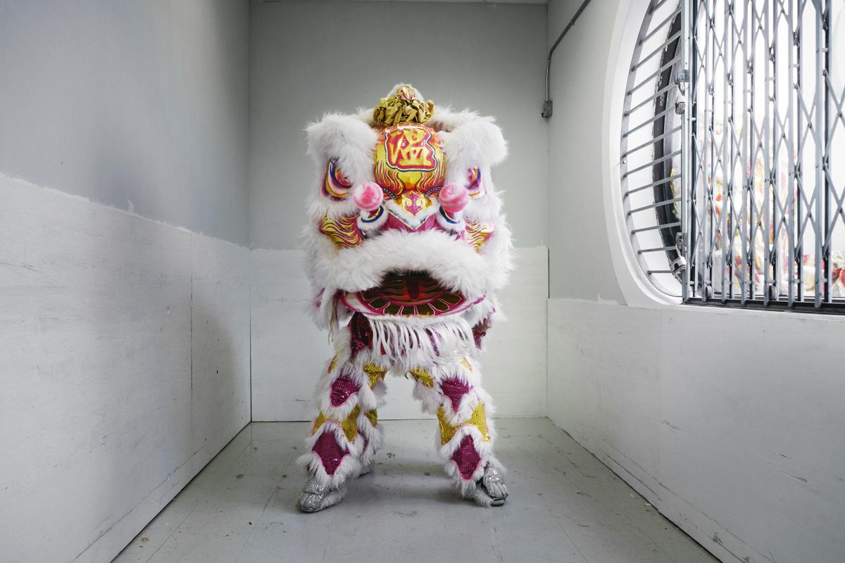 傳統醒獅的獅頭多以竹子做成底框,糊上紗布與槽提紙後上色,最後才加上亮片、絨球、絨毛等裝飾。隨時代演進,現在許多獅頭也會用鋁做底框,不但重量較輕,還能強化結構。醒獅又分為佛山派與鶴山派兩種,圖中是一隻佛山獅,造型較鶴山獅更為兇悍。近年來,舞法輕快的鶴山派舞獅較為流行。